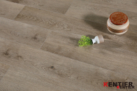 EIR Surface Treatment Wood Plastic Composite Flooring